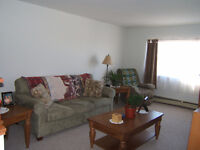 Nice, budget friendly 1 Bedroom, EAST, Forest Hills