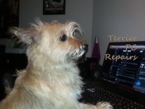 PC Repair Service...
