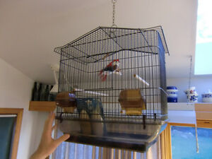 BEAUTIFUL bronze-coloured large bird cage - MINT CONDITION   : )