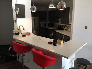 Condo Appartement Downtown Montreal