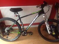 Boardman mountain bike (excellent condition)