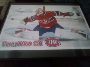 Carey price hockey picture