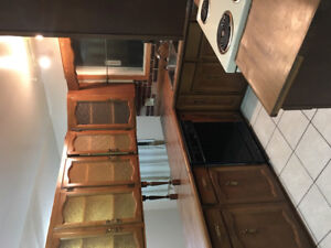 newly painted 3 bedroom house  main floor only