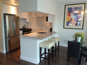 YALETOWN 2/2 FURNISHED CONDO AQUARIUS MEWS (189 DAVIE ST)