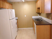 Bright, spacious, legal basement suite in Bridlewood for rent