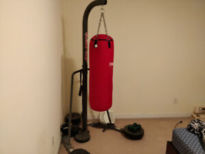 Boxing Bag and Stand $150