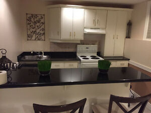 specious one bedroom in walk-out basement for rent Kitchener / Waterloo Kitchener Area image 4