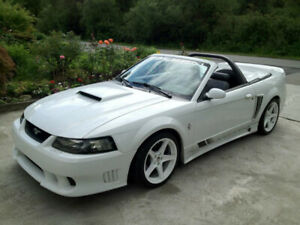 2001 Supercharged Saleen Mustang