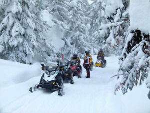 Snowmobile Rentals,Polaris,SkiDoo,Arctic Cat,Yamaha,