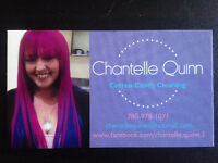 Cotton Candy Cleaning - House Cleaning and Vehicle Detailing