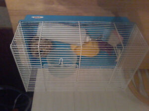 Hamster cage complete