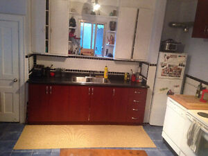 Newly Renovated Prime Downtown Core Location 4 Bedroom Apartment