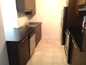 ***NEW CONDO (2012) - Along LACHINE CANAL 1st July**