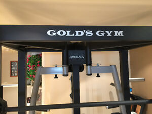 Golds Gym for your house