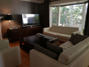 MOVING SALE: Genuine Leather sofas, and armchair-PPU