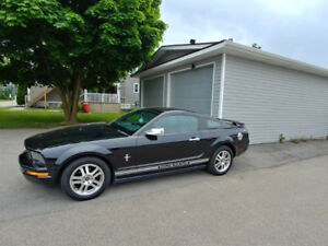 2006 Ford Mustang - w/Pony Package