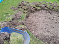 Free topsoil and sod