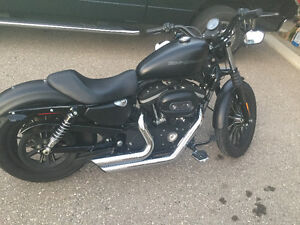 09 Harley Iron 883- American Bike