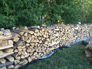Seasoned Firewood - 300$ Bush Cord