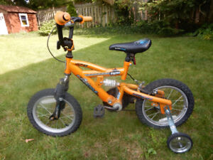 Bicycyle with Training Wheels