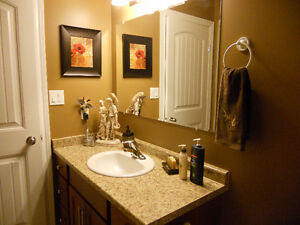 LOOKING FOR A PAINTER YOU CAN TRUST ? Windsor Region Ontario image 9