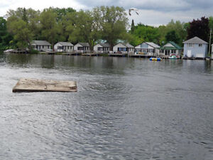 Cabin Rentals on the Lake By Summerland Cottages Kawartha Lakes Peterborough Area image 1