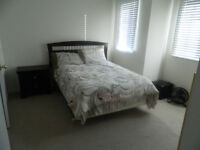 One bedroom and full private bathroom for rent!