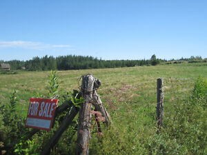 Land with well  2kms.from magnetic hill