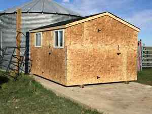 XL Shed / Mini Garage 12 x 20