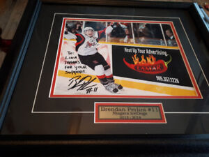 Framed ice dog picture