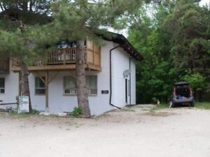 Chalet for Christmas and New year