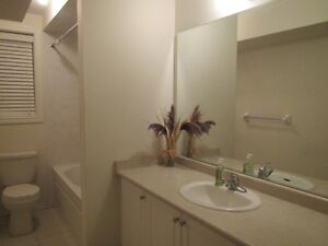 A bright & Luxury one Bed Room Walkout Basement Apart