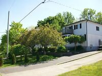 One Bedroom Bsmt. Apartment in Scarborough Bluffs