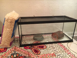 20 Gallon ZooMed ReptiHabitat Terrarium - Great Condition