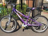 Child's Bike - Dawes Redtail