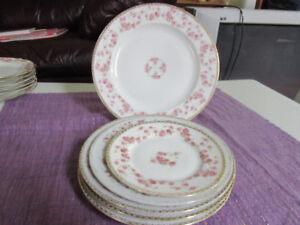 A P Austria - Bridal Rose Selection of Vintage Plates