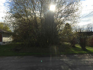 1611 BROADMORE - VACANT BUILDING LOT - $54900
