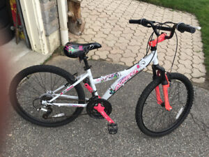 Girls 24 inch Avigo bike