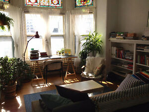 Sunny and Charming Downtown Sublet (May - August)