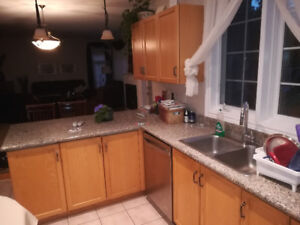 Used kitchen cabinets with granite countertops