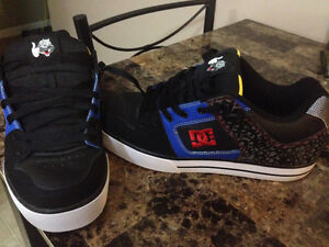 Travis pastrana signature dc shoes
