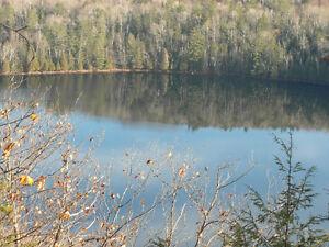 Beau terrain, bord de l'eau Gatineau Ottawa / Gatineau Area image 1
