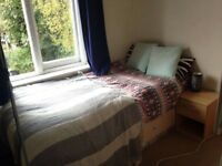 Cosy Room in Spacious Crouch End House with Garden