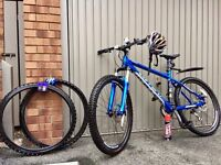 Carrera Centos LTD Mountain Bike