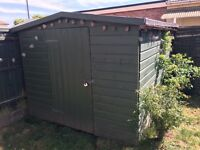 Solid wood 10x8 ft Shed