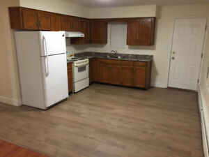 Spacious 900 sq ft. Ground Level Basement For Rent - Renovated