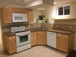 1 Bedroom basement suite, south central, utilities included