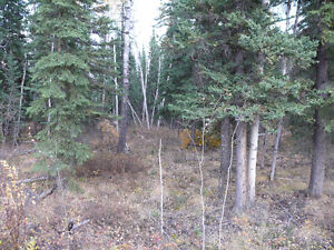 Carmacks Country Residential Lot For Sale