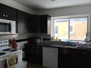 Summer Sublet in Sandy Hill May - July/August 2017