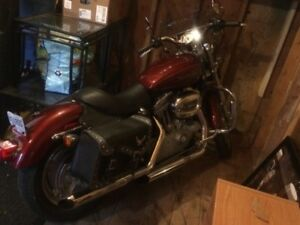 GOING CHEAP 2009 sportster 883 2000km